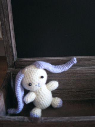 Cuddly bunny1